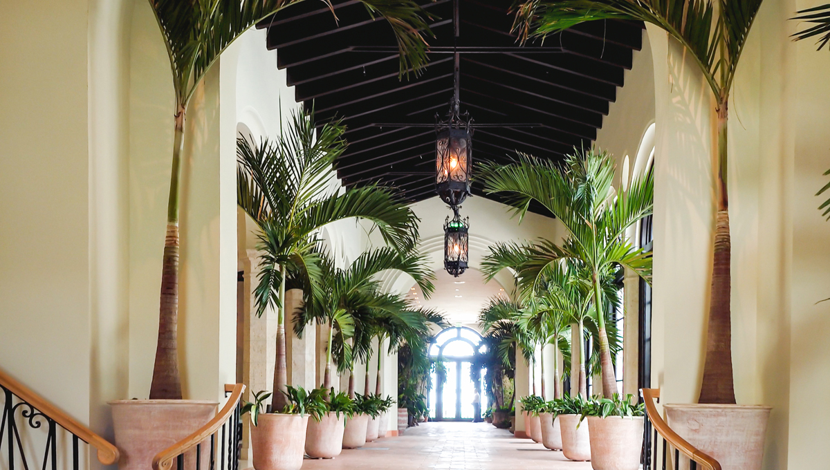 The halls of the Surf Club Four Seasons lined with potted plants
