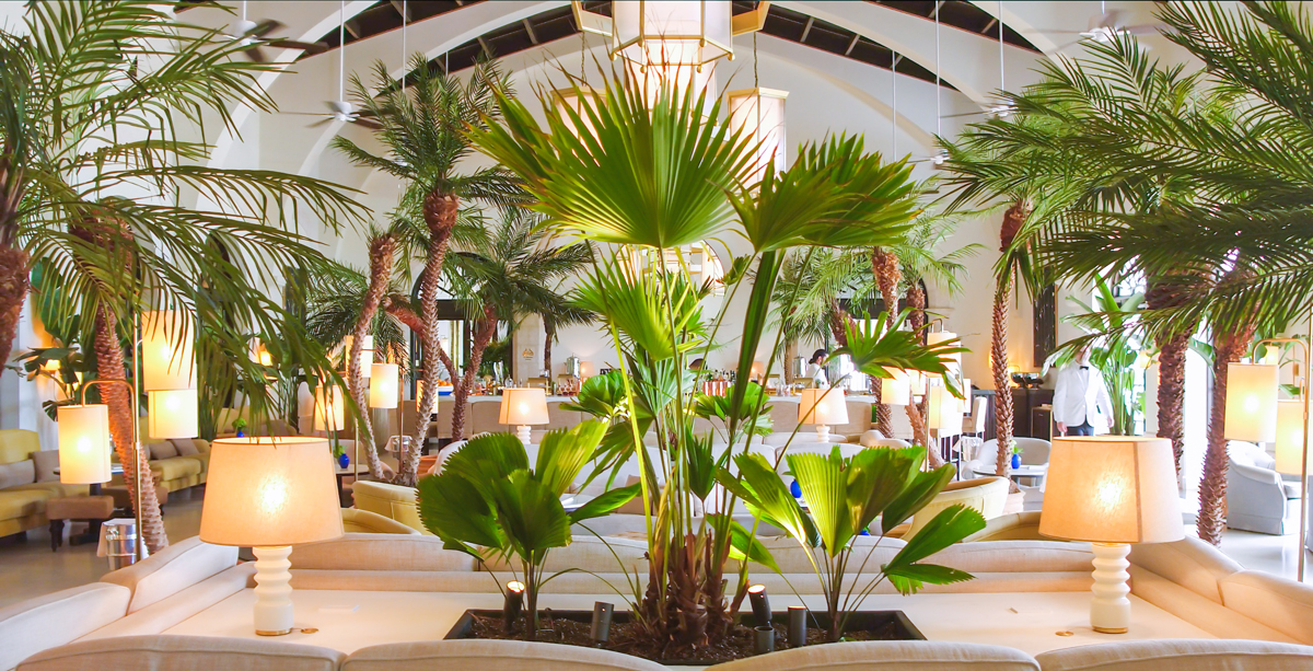 room with many palm trees and plants inside the Surf Club